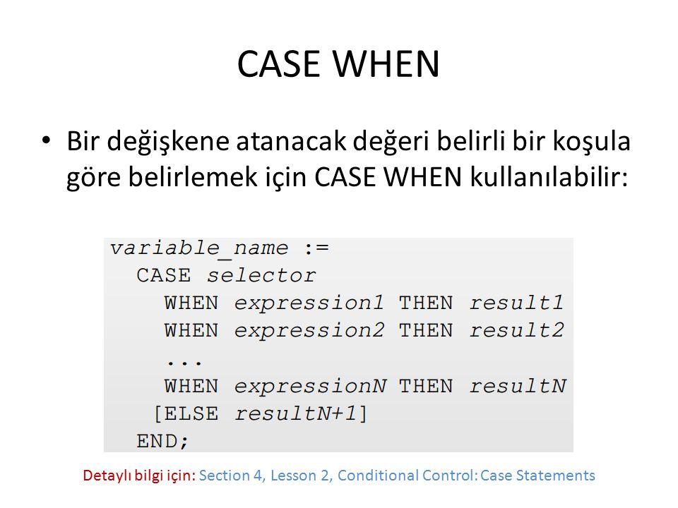 CASE WHEN Bir değişkene atanacak değeri belirli bir koşula göre belirlemek için CASE WHEN kullanılabilir: