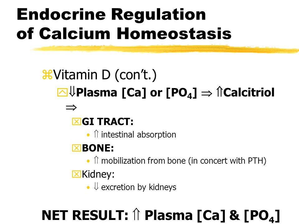 Endocrine Regulation of Calcium Homeostasis
