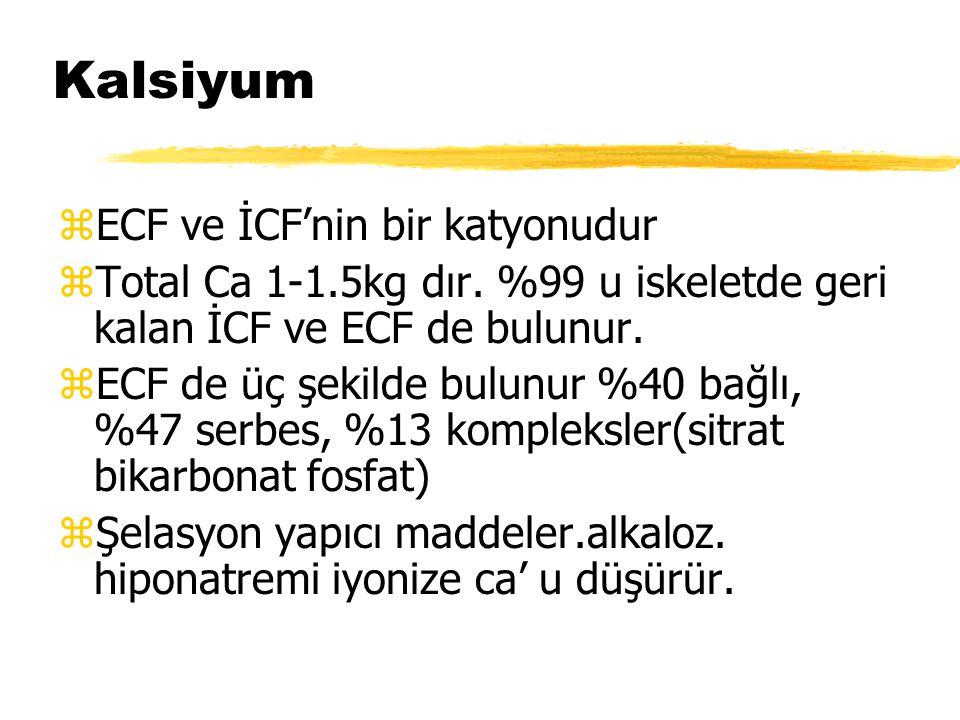 Kalsiyum ECF ve İCF'nin bir katyonudur