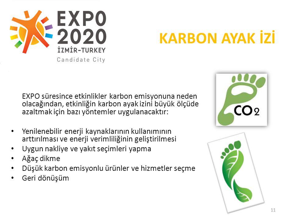 19.05.2013 KARBON AYAK İZİ.