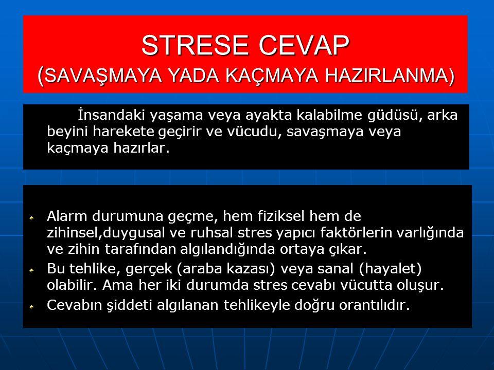 STRESE CEVAP (SAVAŞMAYA YADA KAÇMAYA HAZIRLANMA)