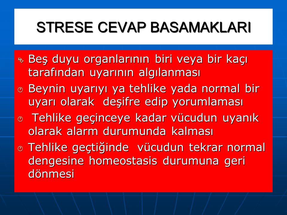 STRESE CEVAP BASAMAKLARI