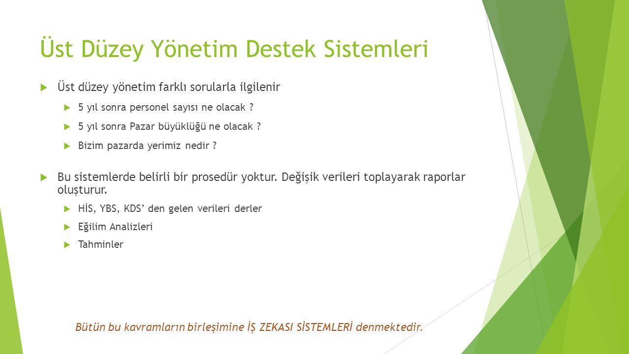 Üst Düzey Yönetim Destek Sistemleri