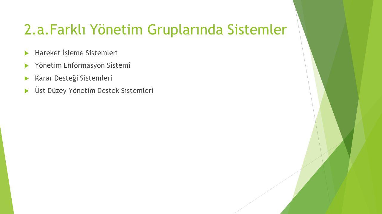 2.a.Farklı Yönetim Gruplarında Sistemler