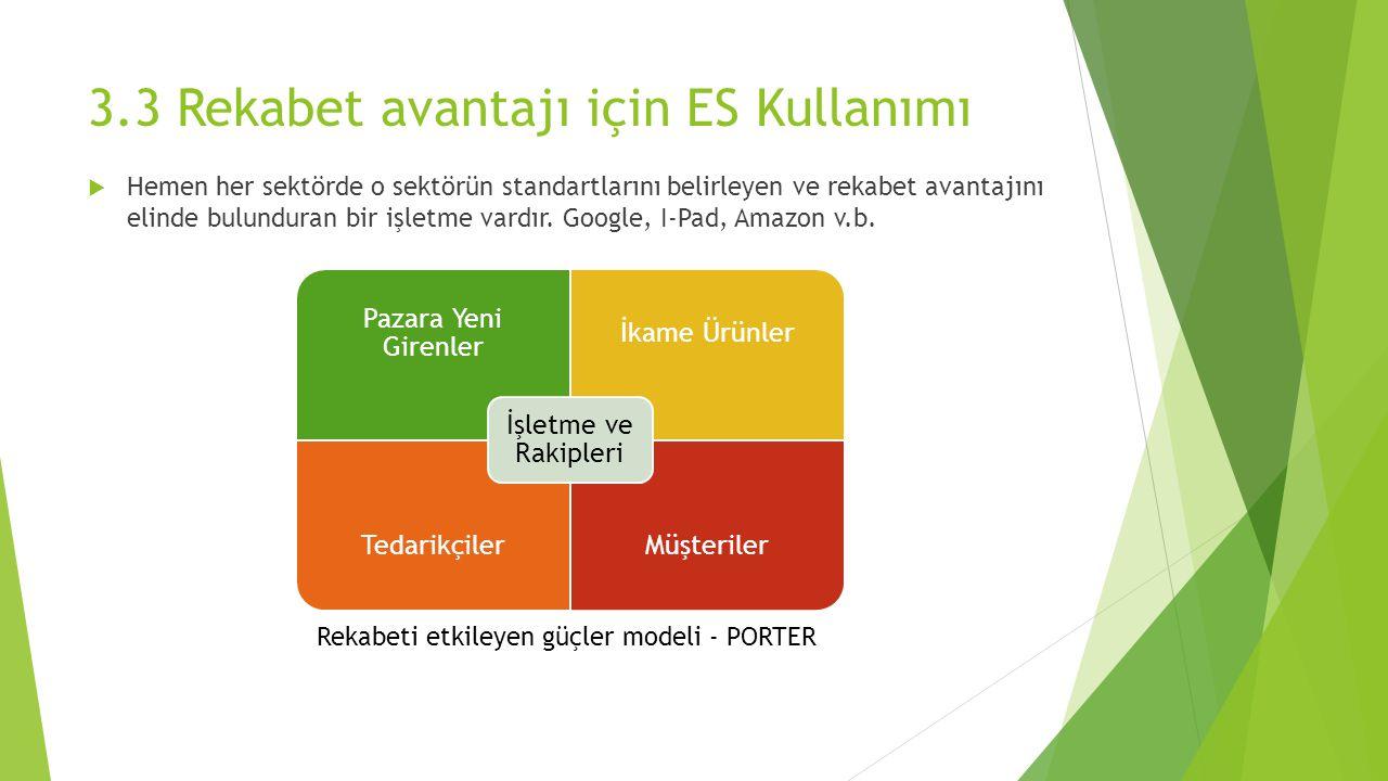 3.3 Rekabet avantajı için ES Kullanımı