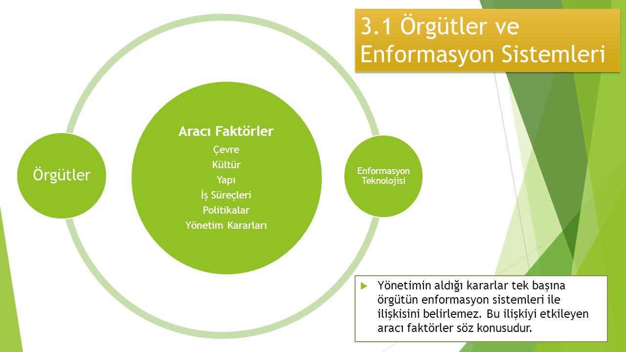 3.1 Örgütler ve Enformasyon Sistemleri