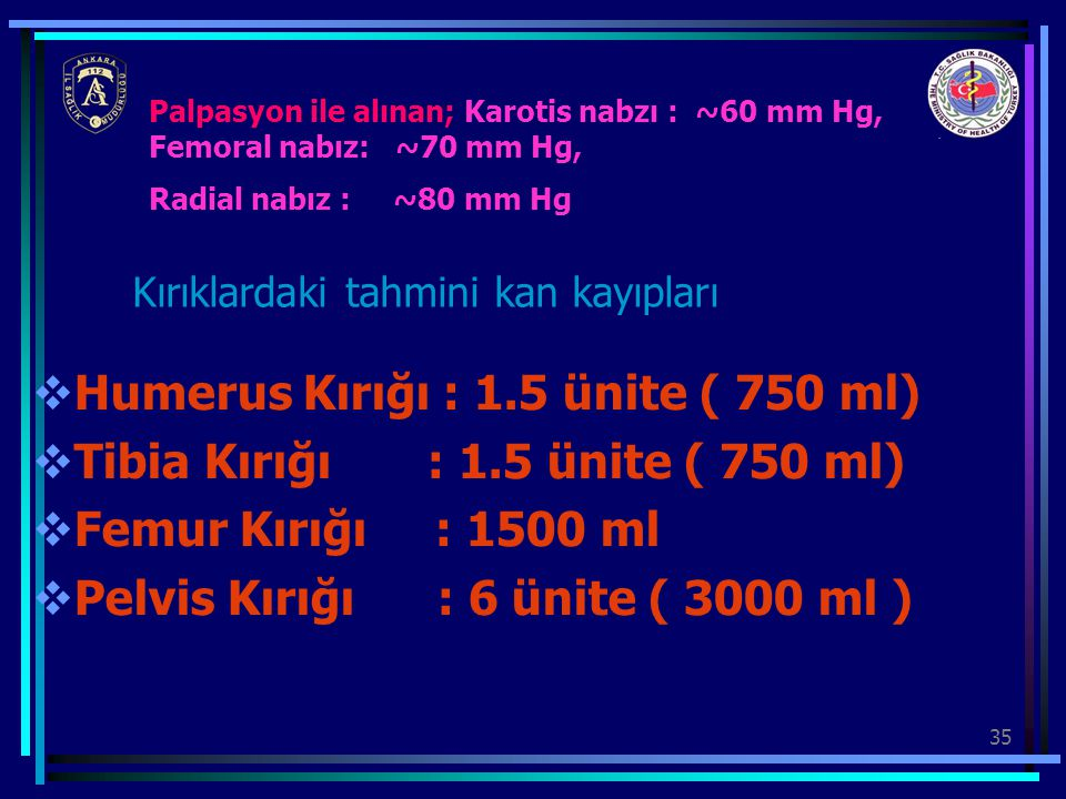 Humerus Kırığı : 1.5 ünite ( 750 ml)