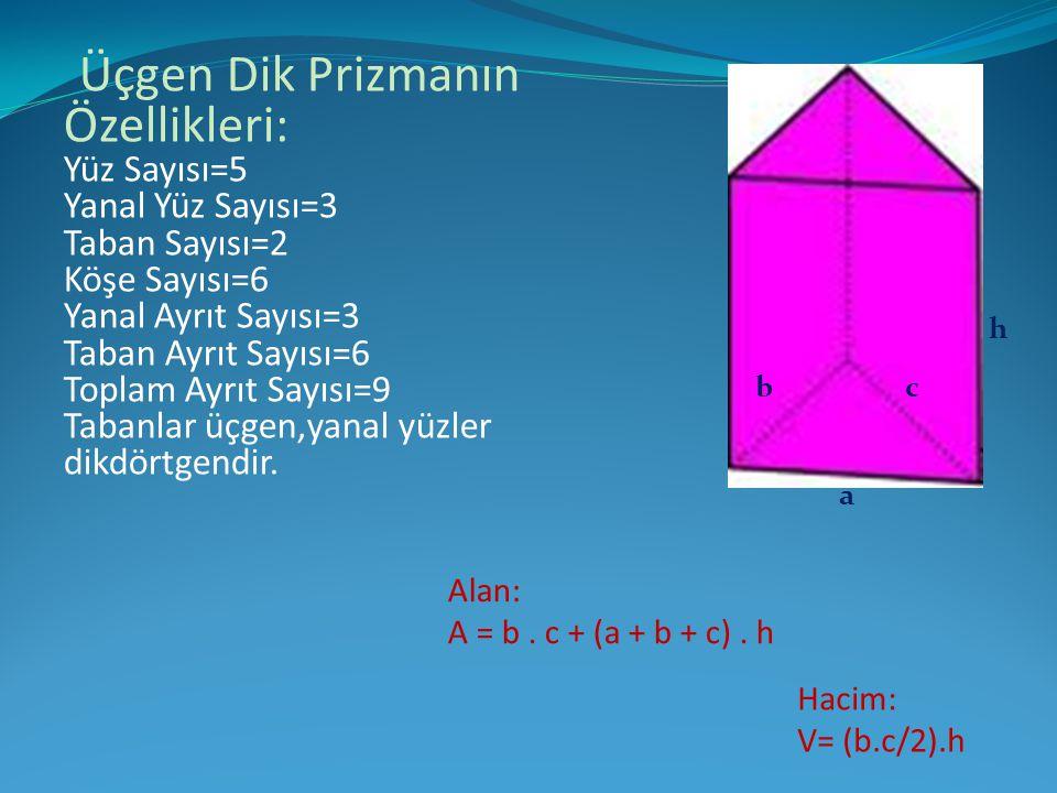 Üçgen Dik Prizmanın Özellikleri: Yüz Sayısı=5 Yanal Yüz Sayısı=3 Taban Sayısı=2 Köşe Sayısı=6 Yanal Ayrıt Sayısı=3 Taban Ayrıt Sayısı=6 Toplam Ayrıt Sayısı=9 Tabanlar üçgen,yanal yüzler dikdörtgendir.