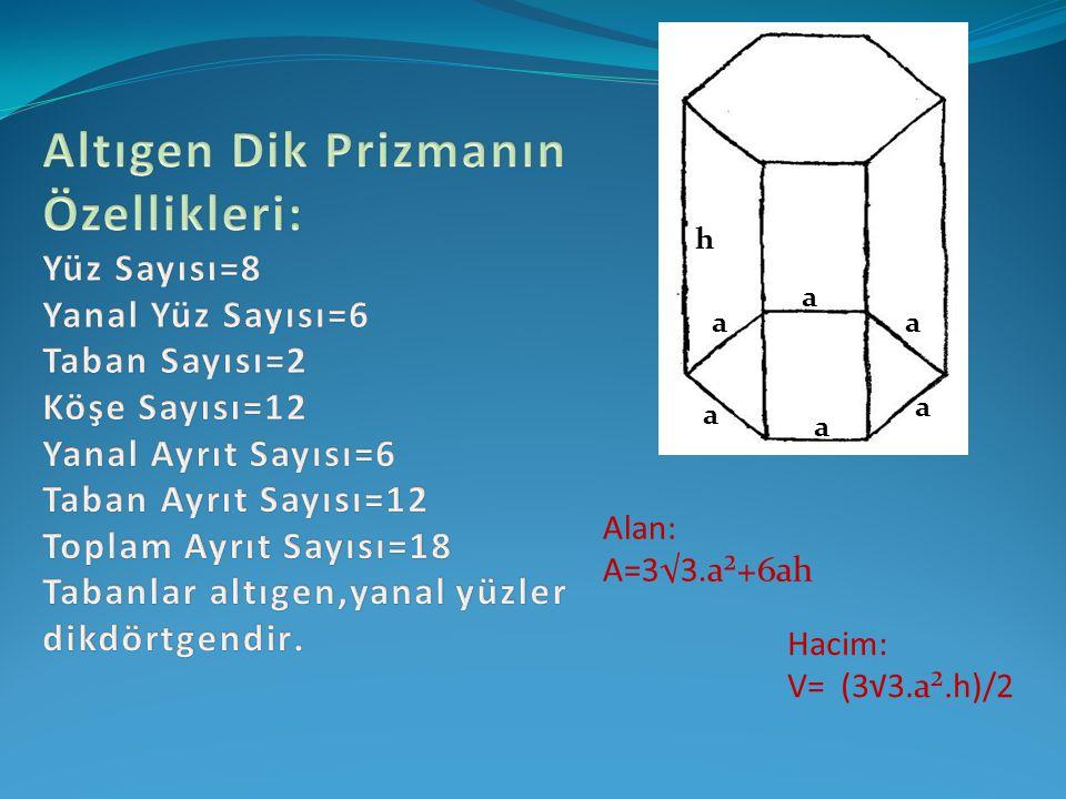 Altıgen Dik Prizmanın Özellikleri: Yüz Sayısı=8 Yanal Yüz Sayısı=6 Taban Sayısı=2 Köşe Sayısı=12 Yanal Ayrıt Sayısı=6 Taban Ayrıt Sayısı=12 Toplam Ayrıt Sayısı=18 Tabanlar altıgen,yanal yüzler dikdörtgendir.