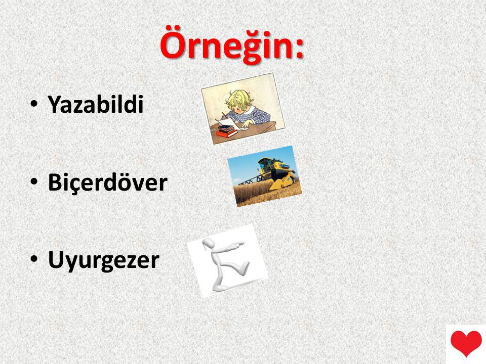 Örneğin: Yazabildi Biçerdöver Uyurgezer
