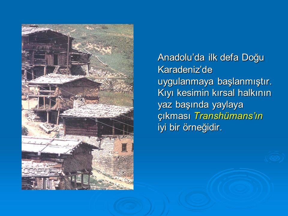 Anadolu'da ilk defa Doğu Karadeniz'de uygulanmaya başlanmıştır
