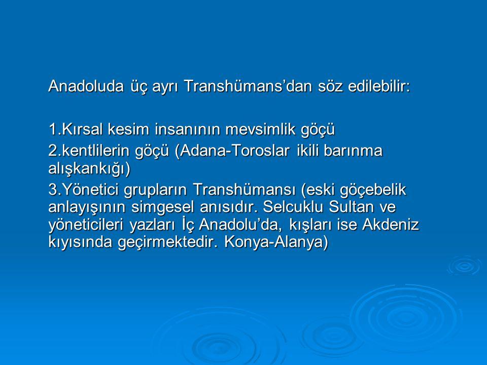 Anadoluda üç ayrı Transhümans'dan söz edilebilir: