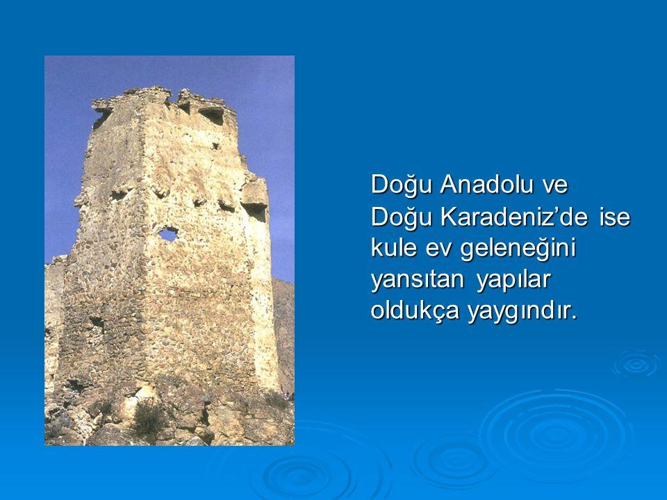 Doğu Anadolu ve Doğu Karadeniz'de ise kule ev geleneğini yansıtan yapılar oldukça yaygındır.
