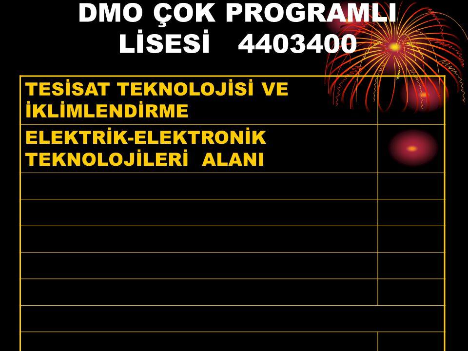 DMO ÇOK PROGRAMLI LİSESİ 4403400