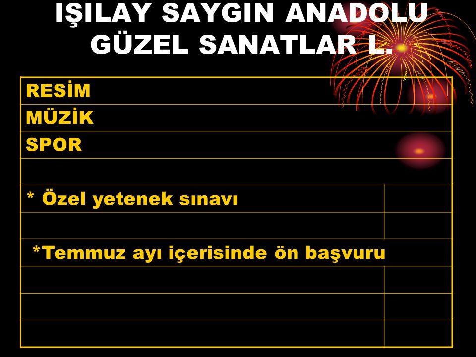 IŞILAY SAYGIN ANADOLU GÜZEL SANATLAR L.