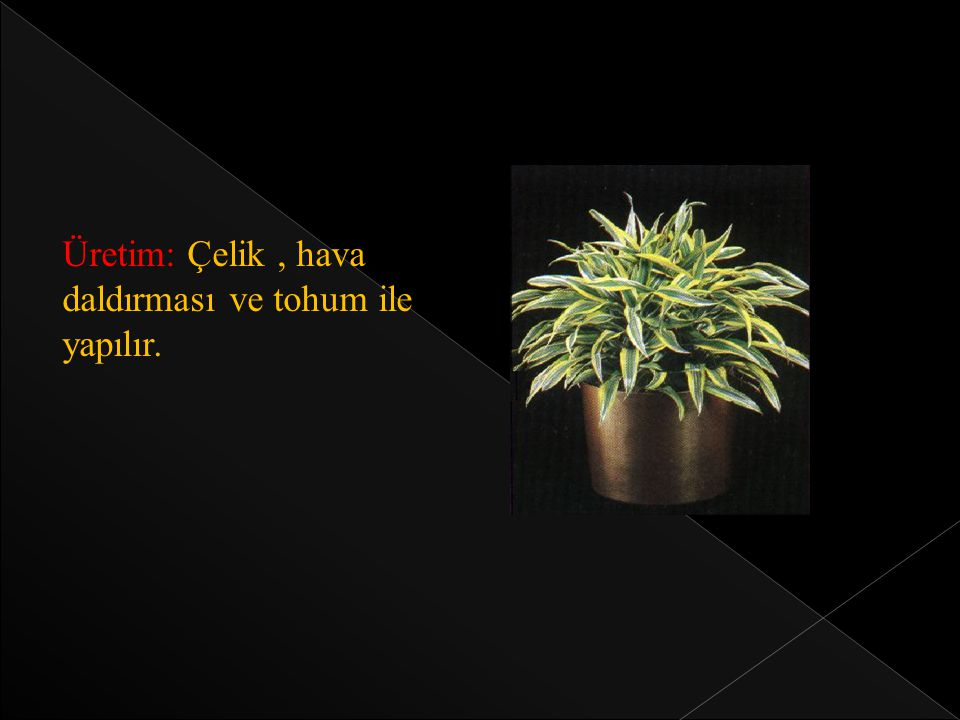 Üretim: Çelik , hava daldırması ve tohum ile yapılır.
