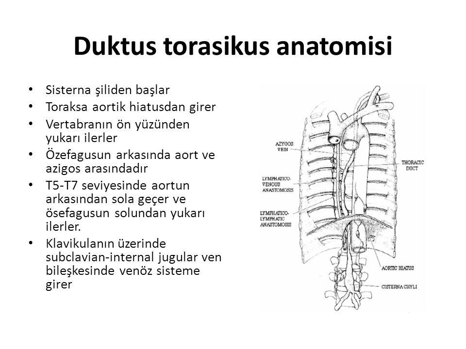 Duktus torasikus anatomisi