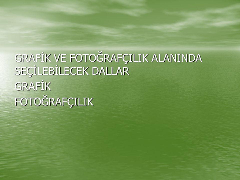 GRAFİK VE FOTOĞRAFÇILIK ALANINDA SEÇİLEBİLECEK DALLAR GRAFİK FOTOĞRAFÇILIK