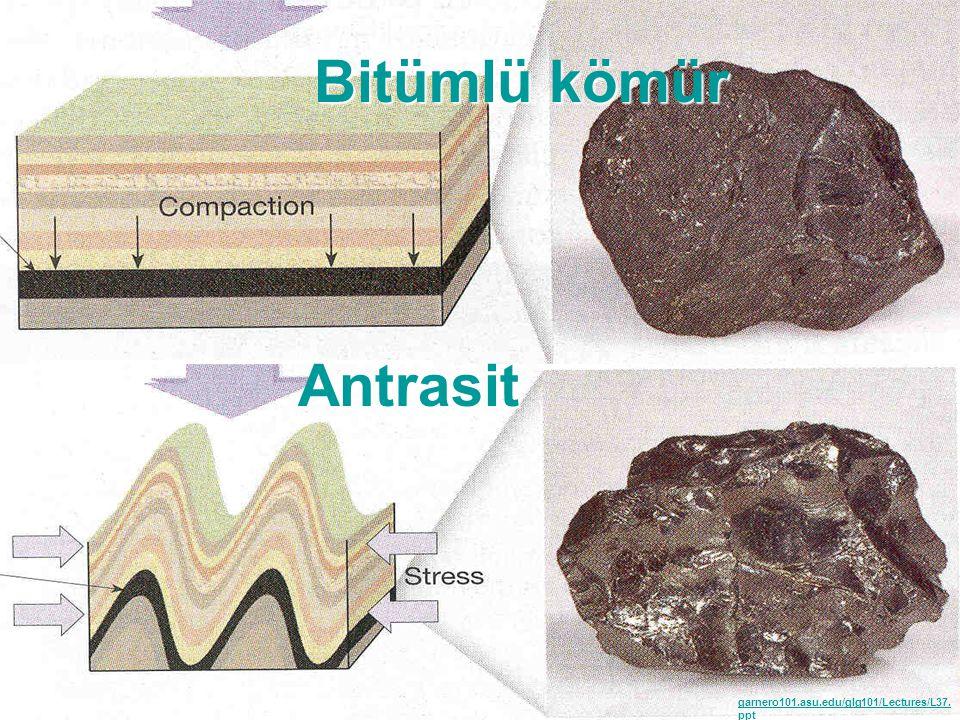 Bitümlü kömür Antrasit garnero101.asu.edu/glg101/Lectures/L37. ppt 9