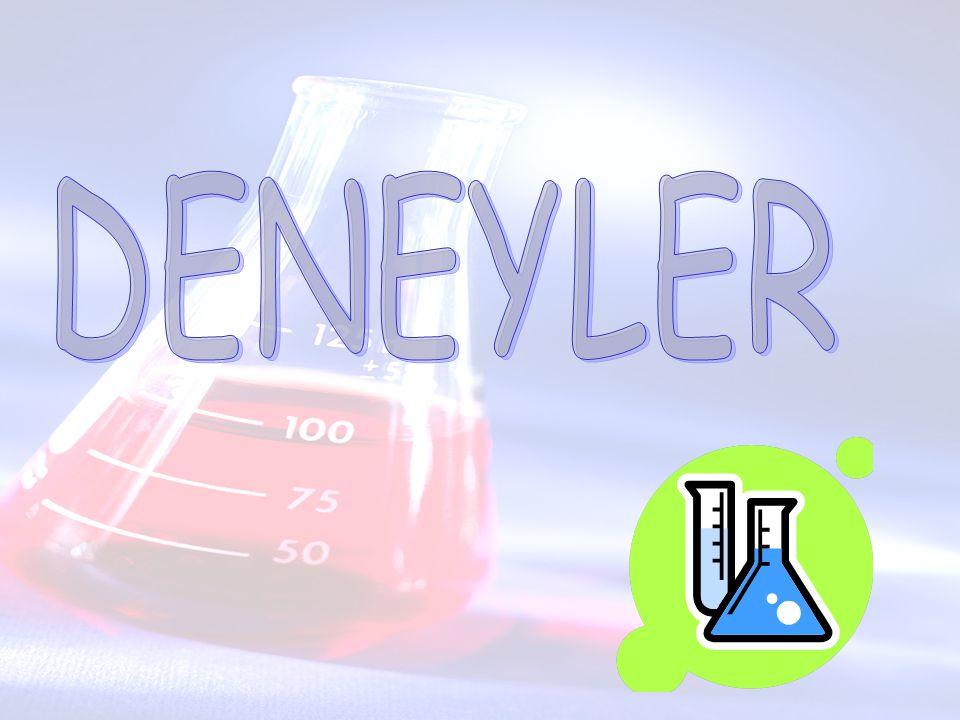 DENEYLER