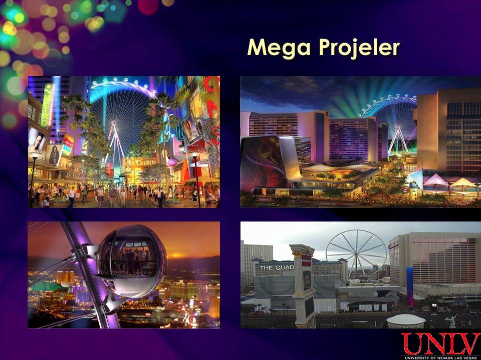 Mega Projeler