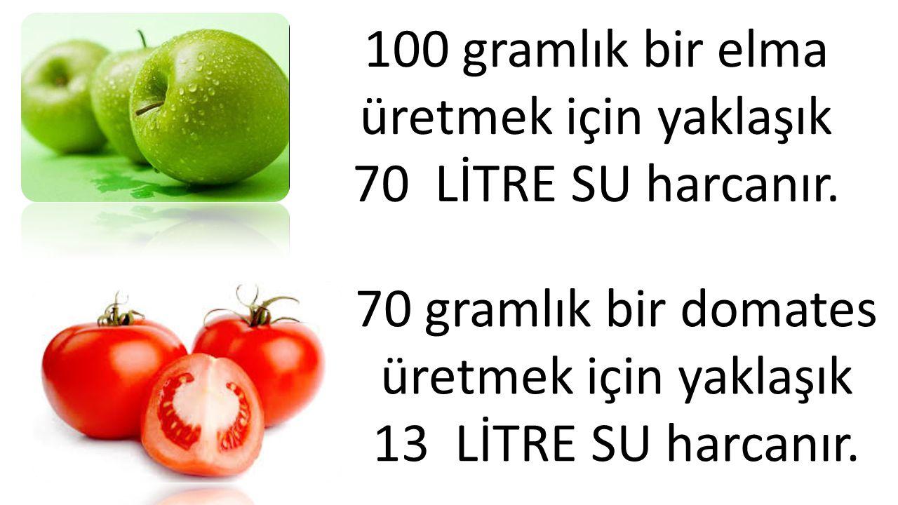 100 gramlık bir elma üretmek için yaklaşık 70 LİTRE SU harcanır.