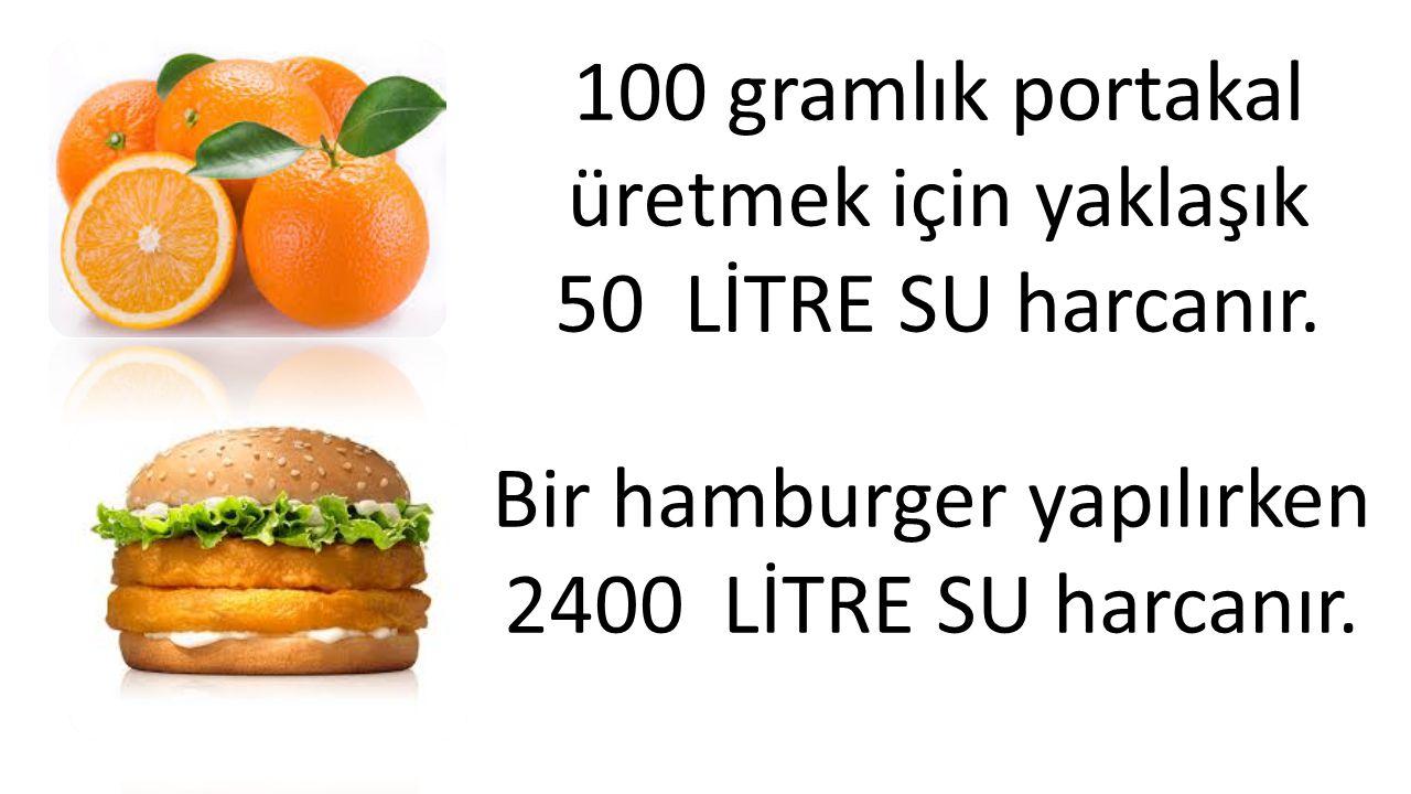 100 gramlık portakal üretmek için yaklaşık 50 LİTRE SU harcanır.