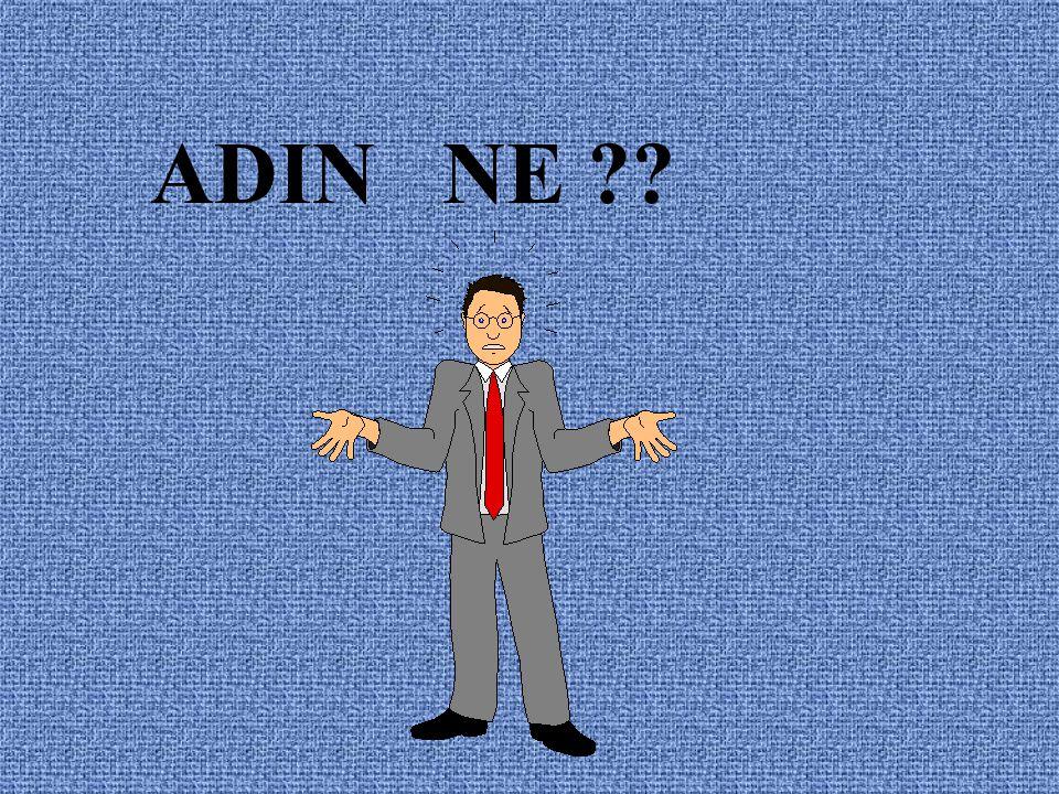 ADIN NE