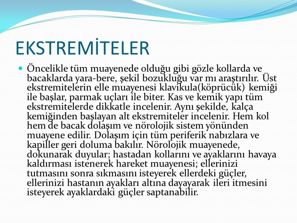 EKSTREMİTELER