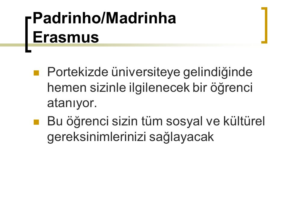 Padrinho/Madrinha Erasmus