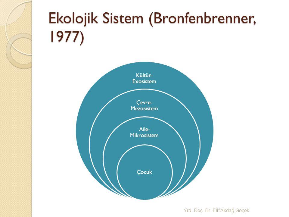 Ekolojik Sistem (Bronfenbrenner, 1977)