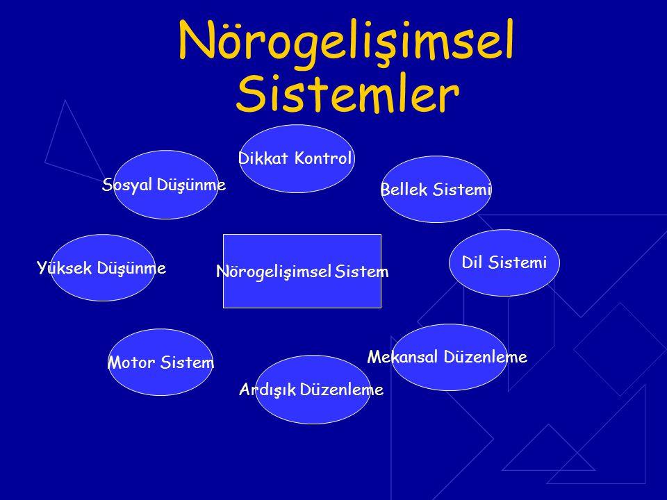 Nörogelişimsel Sistemler