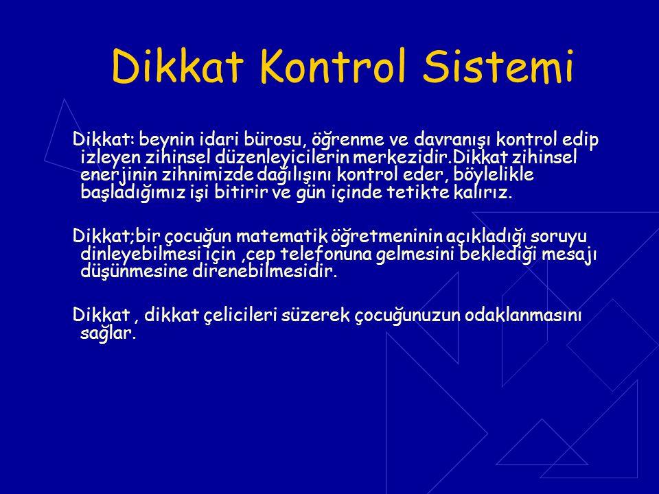 Dikkat Kontrol Sistemi