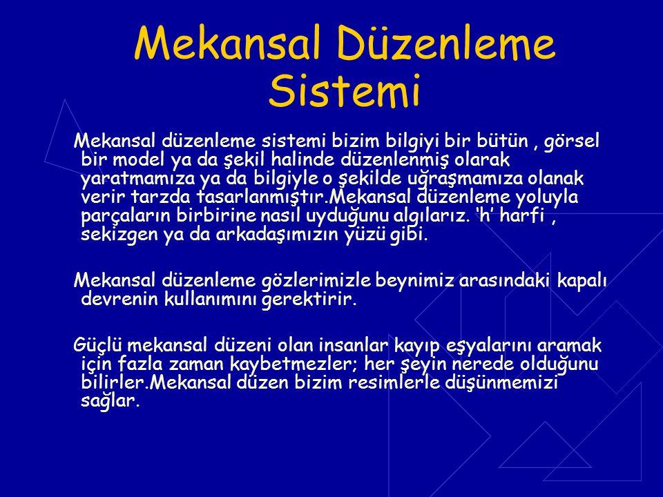 Mekansal Düzenleme Sistemi