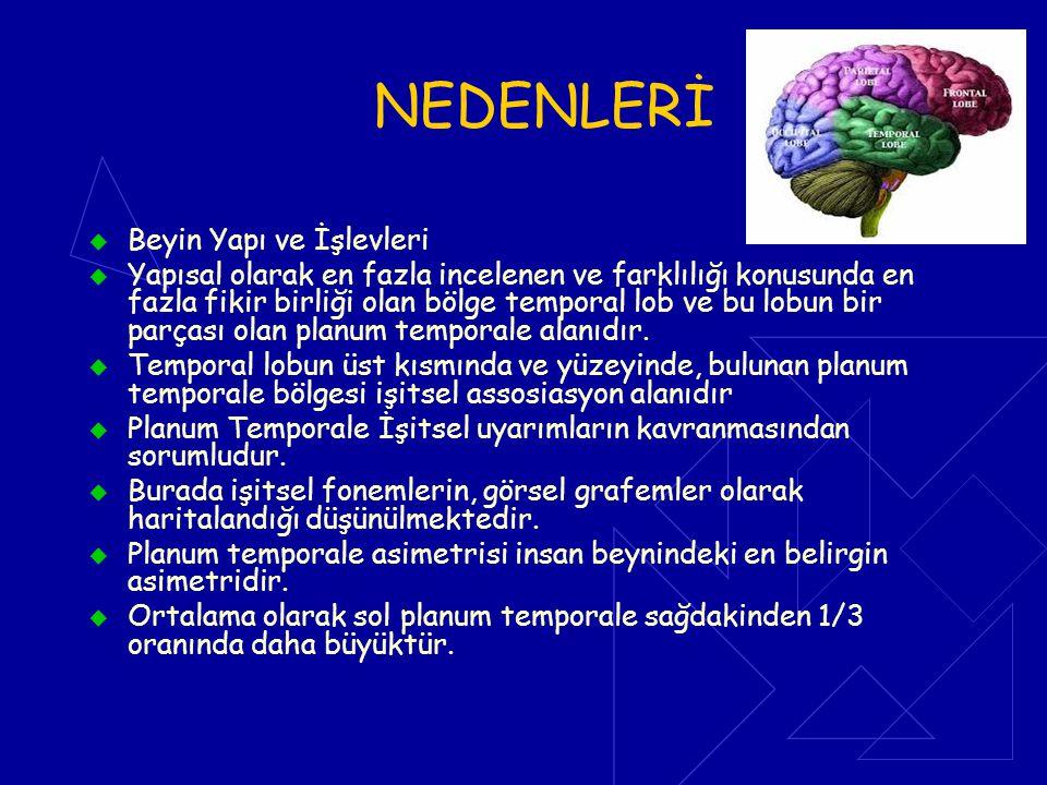NEDENLERİ Beyin Yapı ve İşlevleri