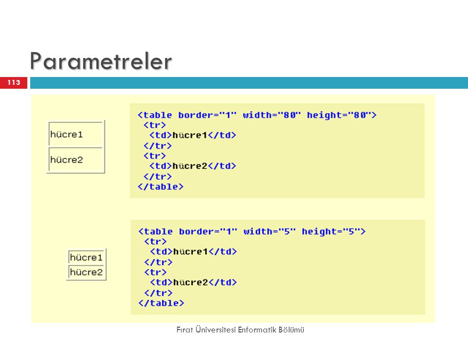 Parametreler Fırat Üniversitesi Enformatik Bölümü