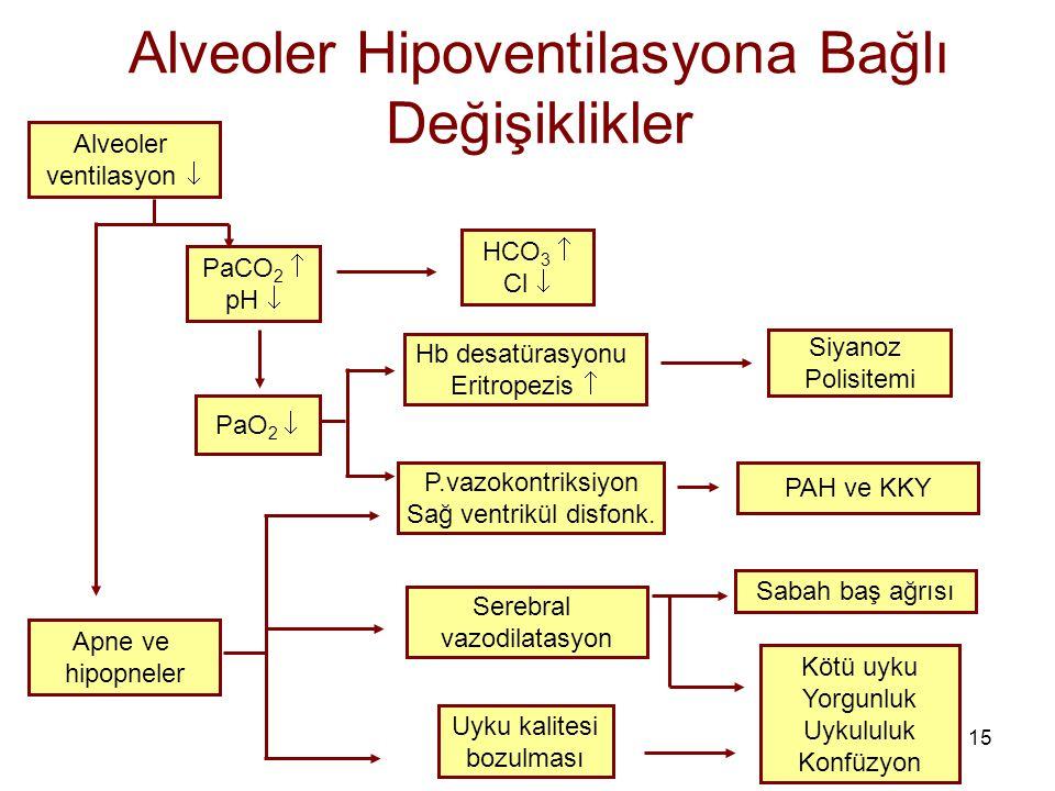 Alveoler Hipoventilasyona Bağlı Değişiklikler