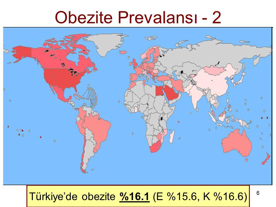 Türkiye'de obezite %16.1 (E %15.6, K %16.6)