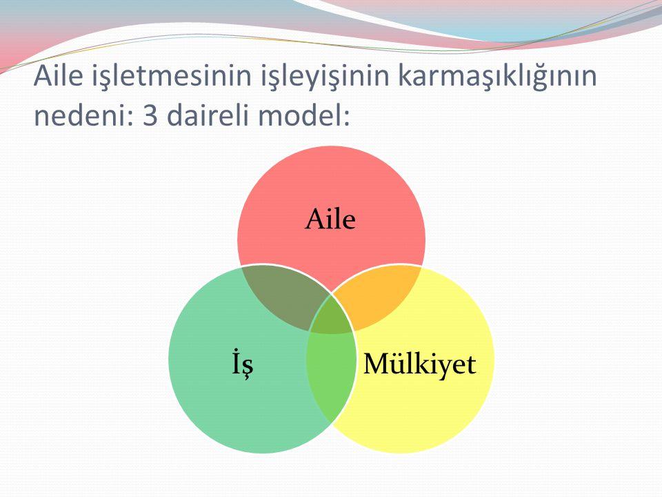 Aile işletmesinin işleyişinin karmaşıklığının nedeni: 3 daireli model: