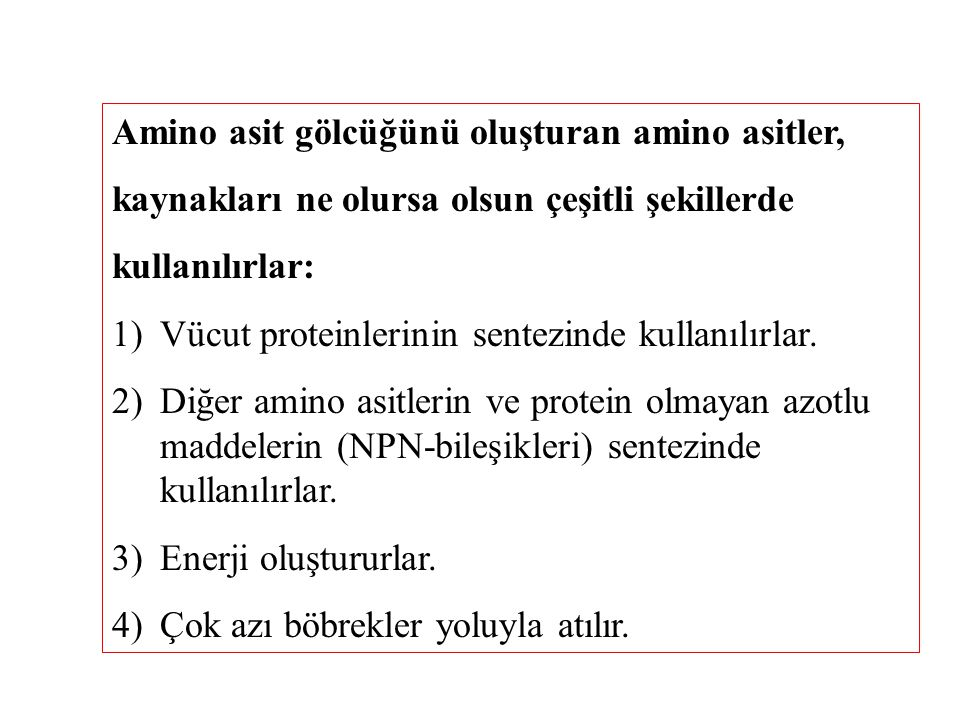 Amino asit gölcüğünü oluşturan amino asitler,