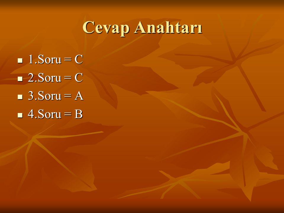 Cevap Anahtarı 1.Soru = C 2.Soru = C 3.Soru = A 4.Soru = B