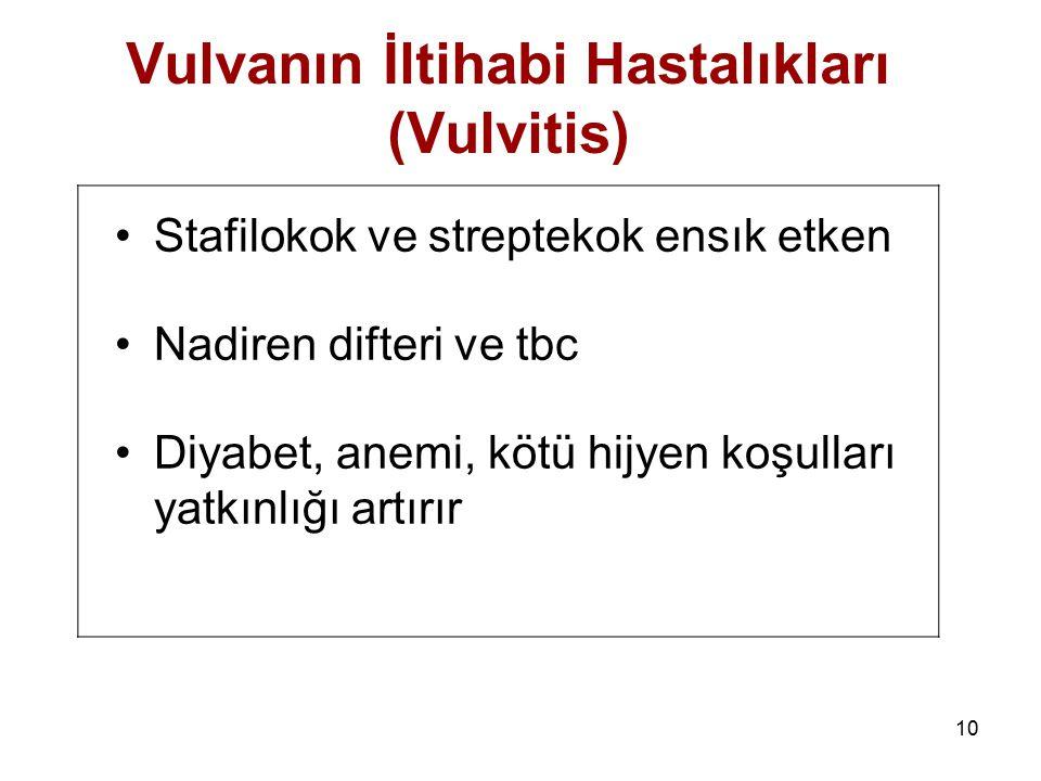 Vulvanın İltihabi Hastalıkları (Vulvitis)