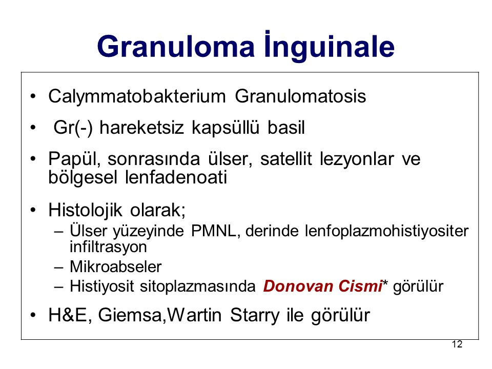 Granuloma İnguinale Calymmatobakterium Granulomatosis