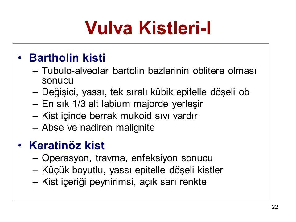 Vulva Kistleri-I Bartholin kisti Keratinöz kist