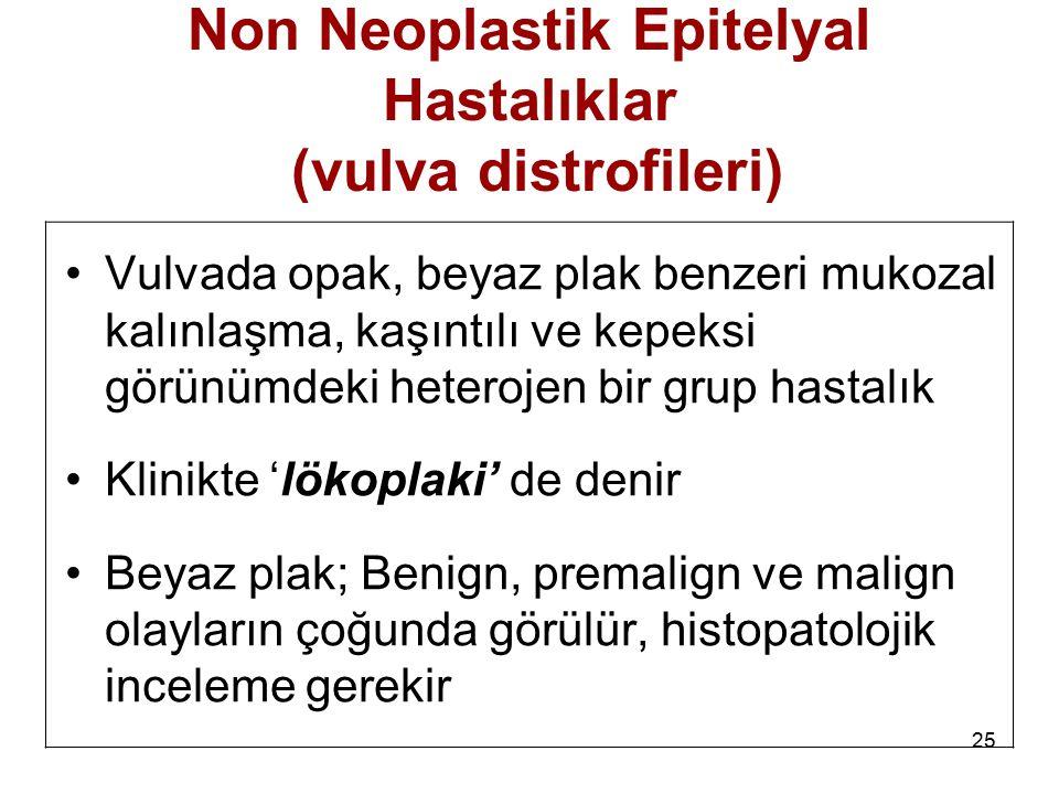 Non Neoplastik Epitelyal Hastalıklar (vulva distrofileri)