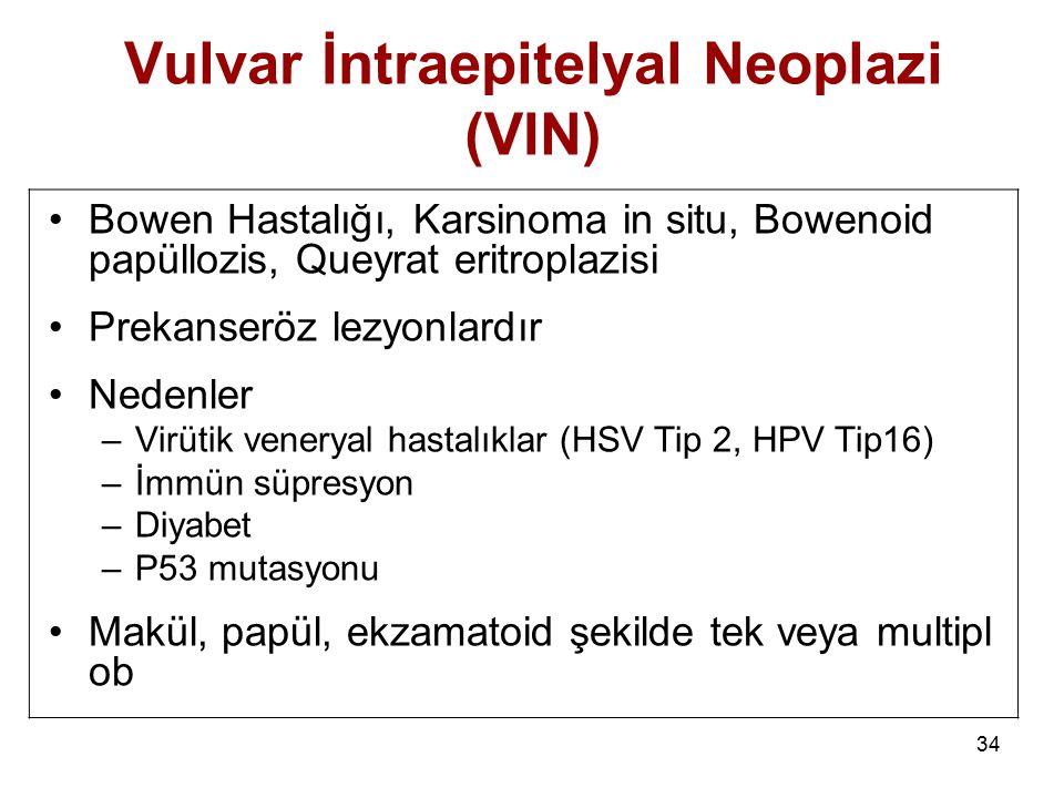 Vulvar İntraepitelyal Neoplazi (VIN)