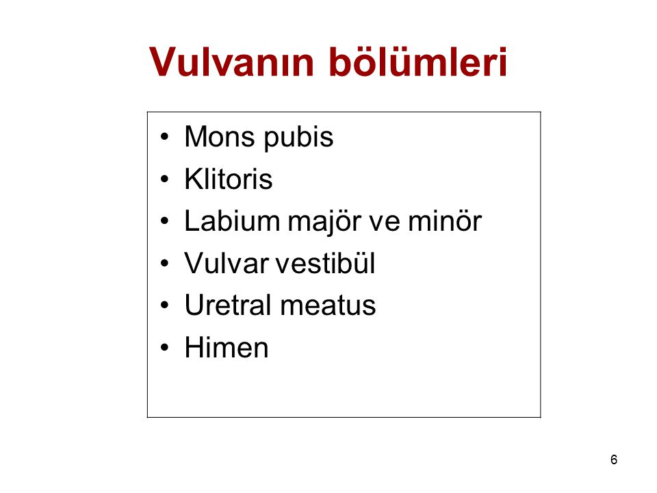 Vulvanın bölümleri Mons pubis Klitoris Labium majör ve minör