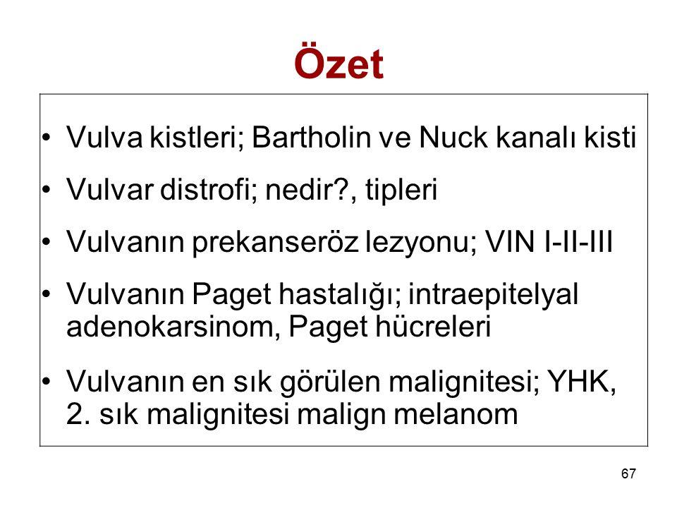 Özet Vulva kistleri; Bartholin ve Nuck kanalı kisti