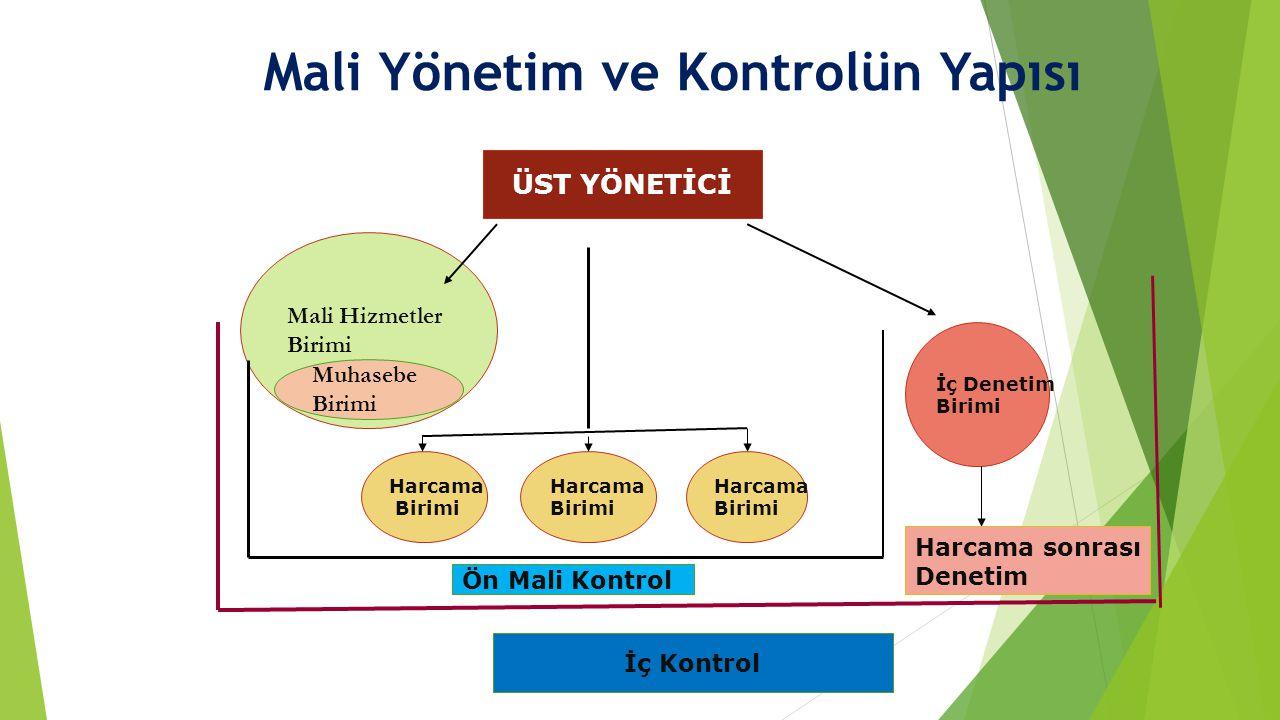Mali Yönetim ve Kontrolün Yapısı