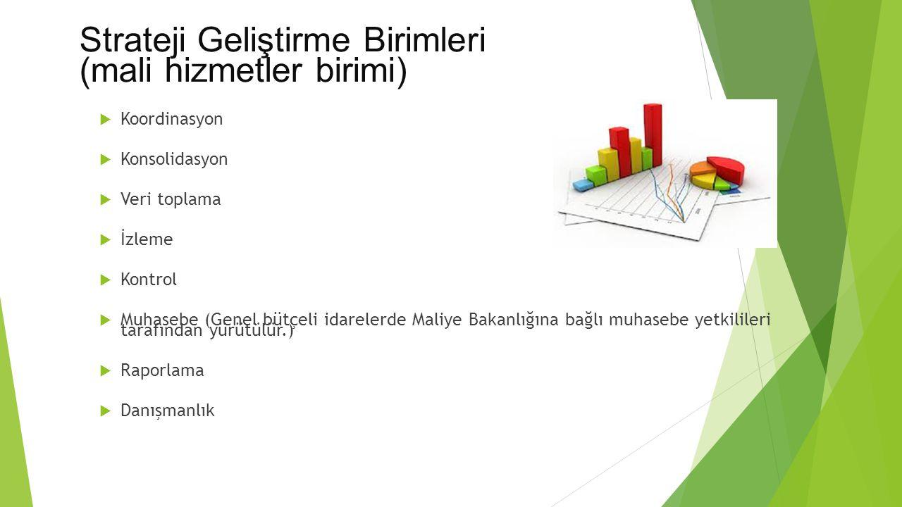 Strateji Geliştirme Birimleri (mali hizmetler birimi)